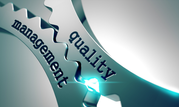 Michigan Business Management Consulting Quality Management