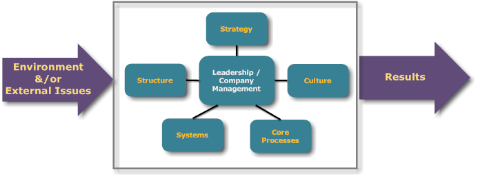 Context of the Organization External